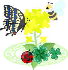Illustration of beautiful brassica