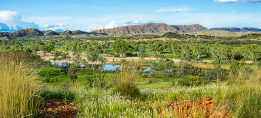 Glen Helen Viewpoint. View over landscape near Glen Helen, NT Australia. Red ochre sand, green grass, eucalyptus trees and iconic mountains. Plants shine vibrant green after heavy rains.