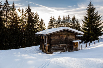 Hütte steht in Winterlandschaft mit Wald im Hintergrund