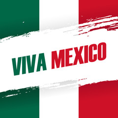 Viva Mexico holiday banner with brush stroke. Vector Illustration.