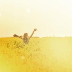 Im Feld bei Sonnenuntergang