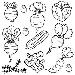 Hand draw of vegetables doodles