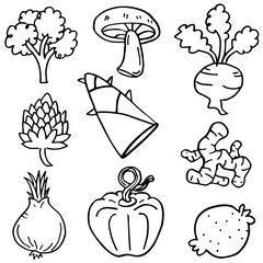 Doodle of vegetable object vector art