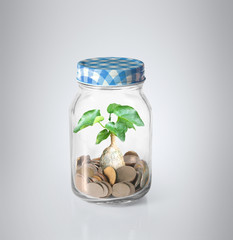 coins in piggy bank Glass