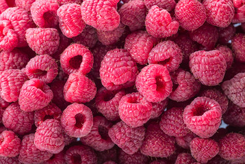 Sweet red raspberries background