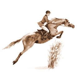 Sepia watercolor rider and horse, jumping a hurdle in forest on white. Jumping steeplechase competition horseman in jacket at. England equestrian sport. Hand painting illustration