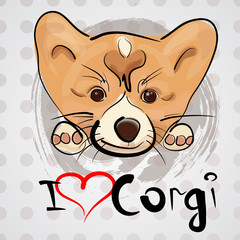 Dog drawing sketch. Slogan I love corgi. Funny pets.