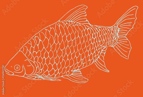 Fische im teich grafik fisch imagens e fotos de stock for Welche fische in teich