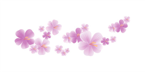 Purple flying flowers isolated on white. Sakura flowers. Cherry blossom. Vector