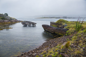 The old flooded wooden boats in water of the Barents Sea, Teribe