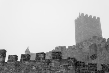 Castle of Xavier on a foggy day (Spain)