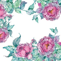Watercolor peonies bouquet over white background