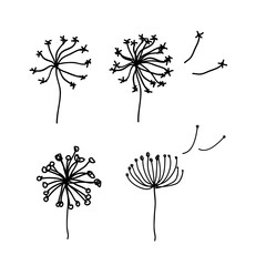 Black dandelion silhouette with wind blowing flying seeds isolat