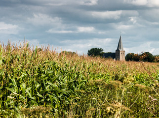 Church tower of Drempt between the cornfields, Gelderland, Holla