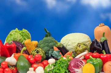 Variety of vegetables on blue background