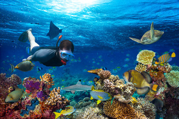 Photo sur Plexiglas Plongée young male snorkler exploring colorful underwater world coral reef with many fishes sea turtle shark snorkling background