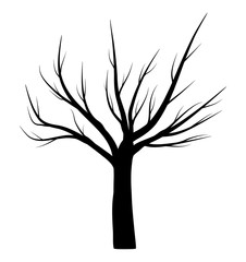 bare tree winter vector symbol icon design.