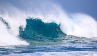 North Shore Winter Waves