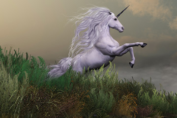 White Unicorn on Mountain - A white unicorn stallion rears up with power and majesty on a hilltop of a mountain range.