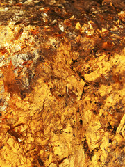 Texture of the gold leaf, Gold background, Picture from Buddha i
