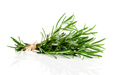 bundle of  fresh rosemary on a white background
