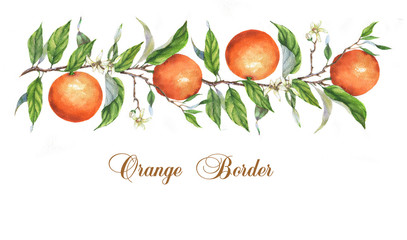 Hand drawn watercolor border template with oranges on the branch. Watercolor orange frame