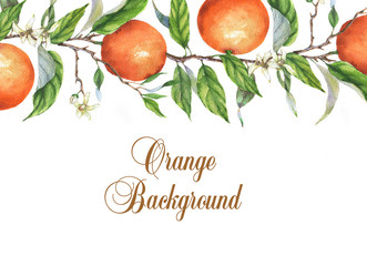 Hand-drawn watercolor drawing with orange on the branch. Repeated orange background. Poster, banner, advertisement template