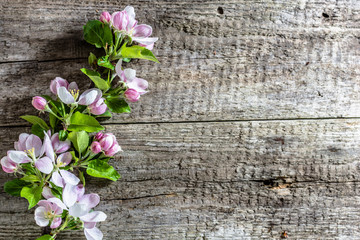 Spring blossoms on wooden background