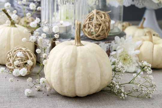 Floral decoration with white pumpkins