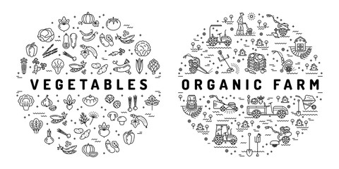Agriculture farming and Vegetable flat infographics. Thin line icons of vegetables and farm equipment machinery. Organic farm symbols, Vector illustration
