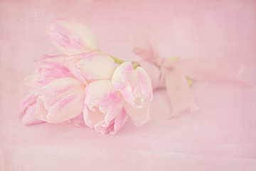 Gentle pink tulips on a pink background with a texture.Vintage style ,grunge paper background.