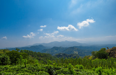 Beautiful Mountain view landscape over tea plantation with Blue sky and white clouds in Nelligala Kandy, Sri Lanka