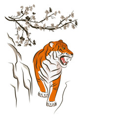 Angry tiger and Chinese plum tree. Traditional Japanese ink painting sumi-e. Vector isolated on white.