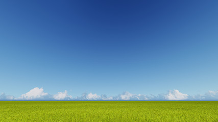 Green grass field and bright blue sky 3D rendering