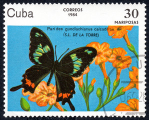 UKRAINE - CIRCA 2017: A stamp printed in Cuba, shows image of a butterfly Parides gundlachianus calzadillae (S.L. DE LA TORRE) close-up, circa 1984