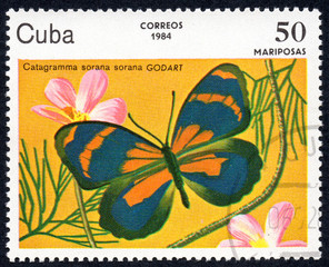 UKRAINE - CIRCA 2017: A stamp printed in Cuba, shows image of a butterfly Catagramma sorana sorana GODARD close-up, circa 1984