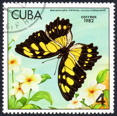 UKRAINE - CIRCA 2017: A stamp printed in Cuba, shows image of a butterfly Metamorpha stelenes insularis (Mounard) close-up, circa 1982