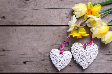 Spring yellow flowers  and two white decorative hearts