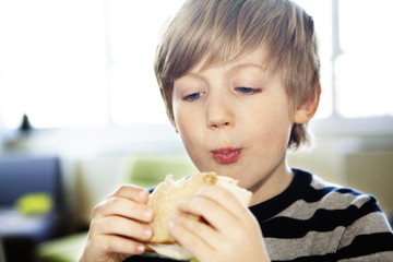 Boy (6-7) eating sandwich