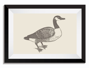 Vintage Retro Vector Drawing Illustration of a Duck Bird in a Frame. Perfect for Web Design, T-Shirt Graphics, Shirts, Scrapbooking, Logos, Badges and Insignia.