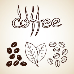 Hand drawn coffee beans, leaves and label. Vector eps8 illustration.