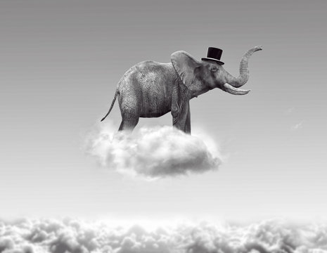 Elephant flying in the clouds