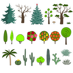 Vector illustration of different kind of tree