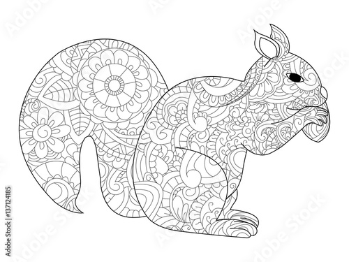 Quot Squirrel With Nut Coloring Vector For Adults Quot Stock Image