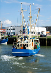 Krabbenkutter im Hafen von Büsum in Nordfriesland