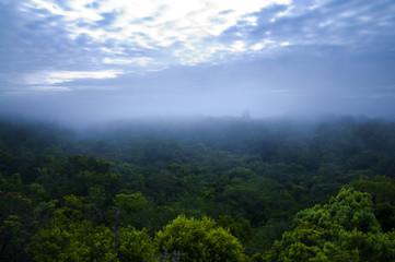 Tikal, mayan ruins. Guatemala