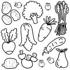 Vector illustration of vegetable object doodles