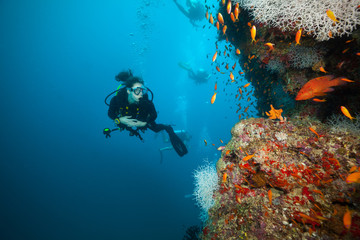Photo sur Plexiglas Plongée Young woman scuba diver exploring coral reef