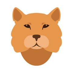 cougar head vector illustration style Flat