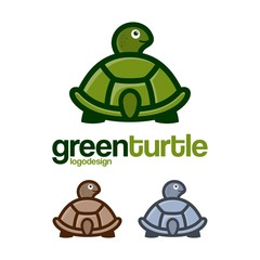 Turtle Logo Back Side